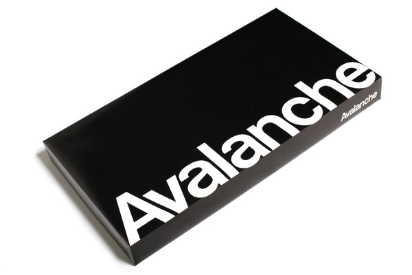 avalanche_primary_information.jpg