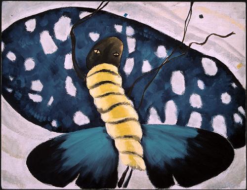 dove_moth_nga.jpg