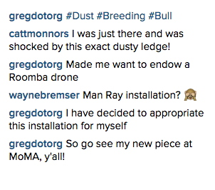 dust_breeding_bull_insta.jpg