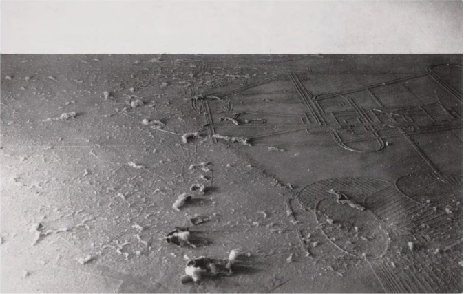 dust_breeding_contact_print_1920.jpg