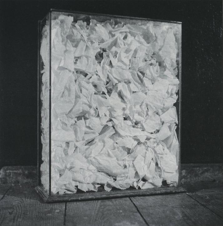 rauschenberg_paper_painting_1953.jpg