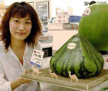 walter_robinson_pointy_melon.jpg image: shibuyabuya