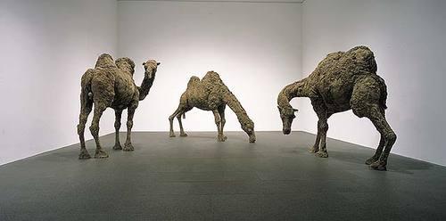 graves-3-camels.jpg