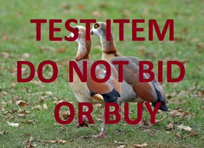 ANDR Test Auction DO NOT BID OR BUY - SME JSS Related 2.JPG