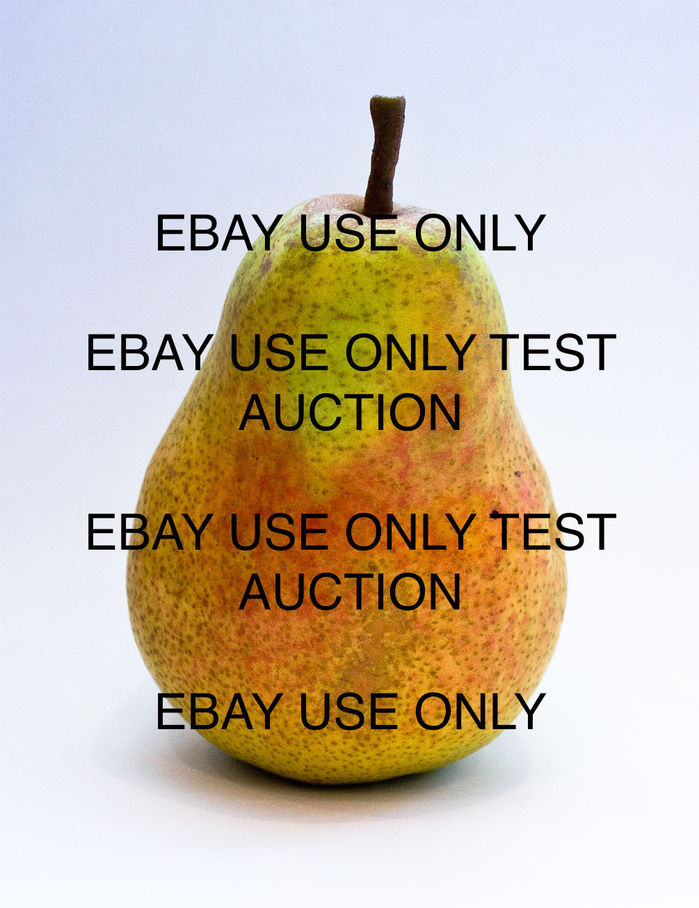 ANDR TEST ITEM - DO NOT BID OR BUY - SPEED TEST DO NOT TOUCH - BH001.JPG