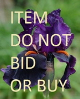 do_not_bid_or_buy_iris_sidebar.jpg